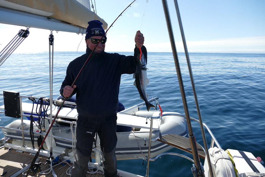 """Fishing In Norwegian Waters: """"... is quicker than going to the supermarket!"""""""